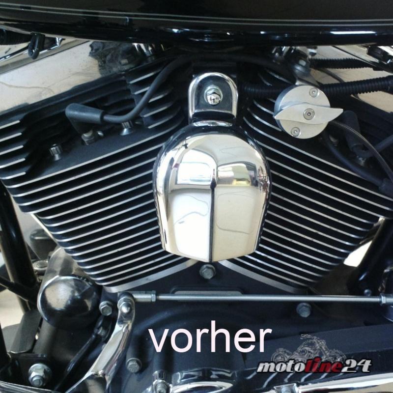 Harley Davidson Horn Covers Sale