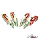 Champion Spark Plug for Harley-Davidson | EVO models |...